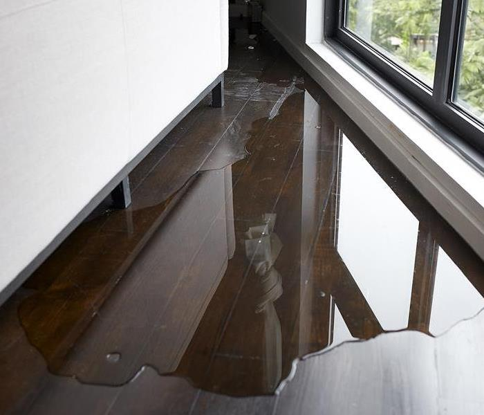 Water on hardwood flooring next to a window.