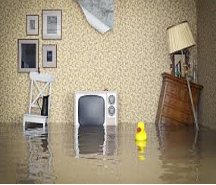 Flooded living room with contents floating