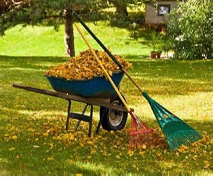 General FALL YARD CLEANING TIPS