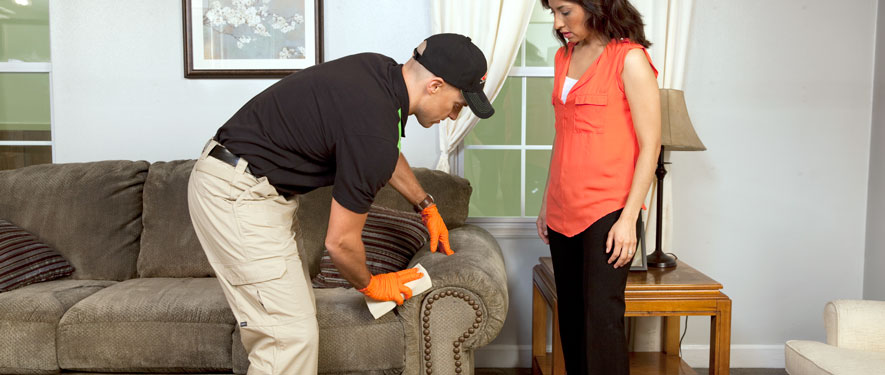 Malden, MA carpet upholstery cleaning